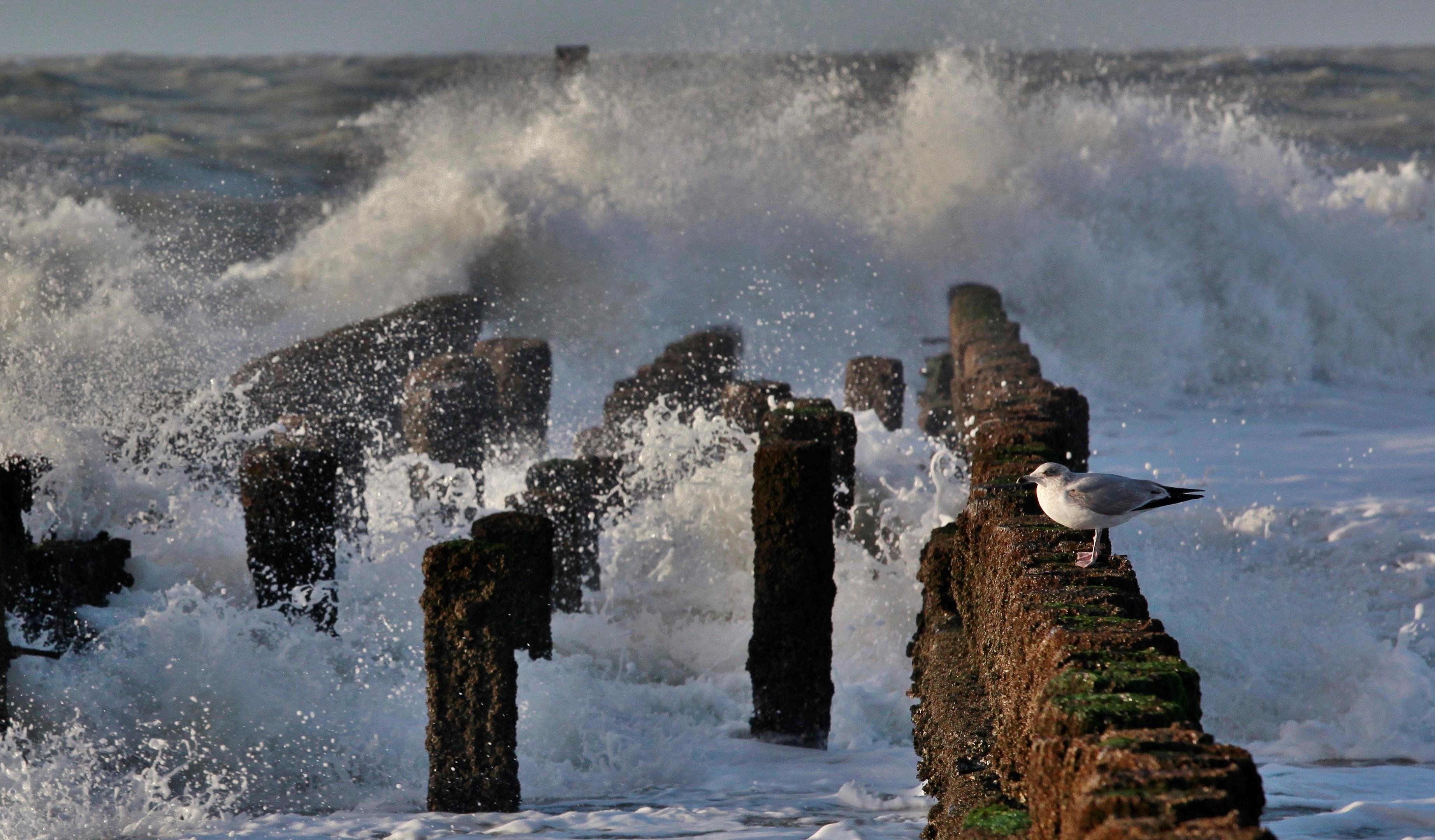Invigorating salty spray of the North Sea