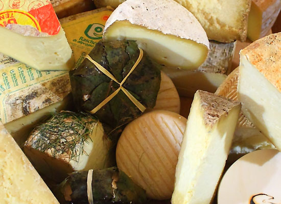 Tasting of Italian cheeses, refined and aged by the experts