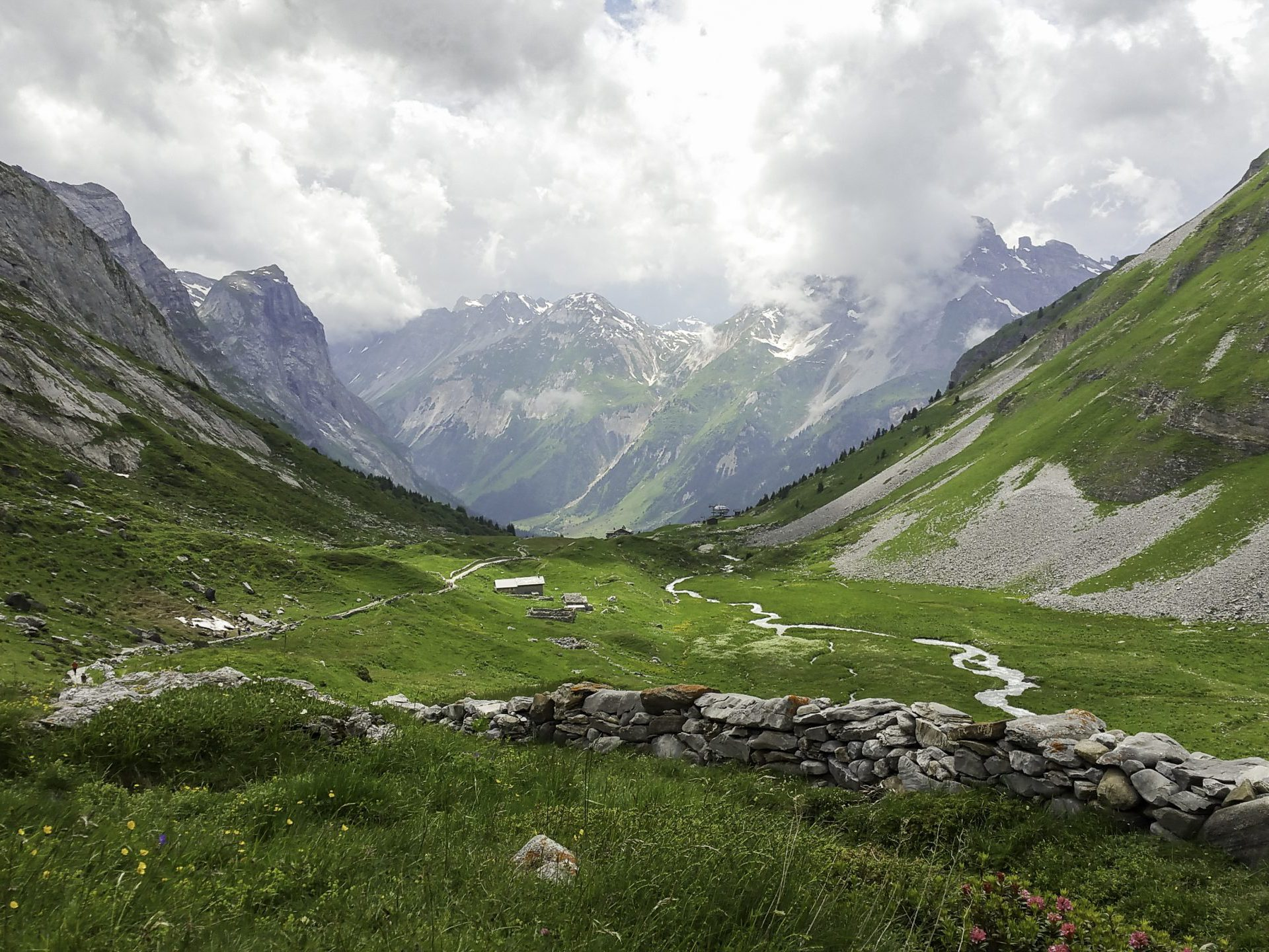 Alpine scenery in summer